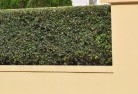 Adelaide Plains Decorative fencing 30