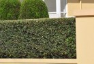 Adelaide Plains Privacy screens 30